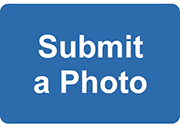 Submit a photo button